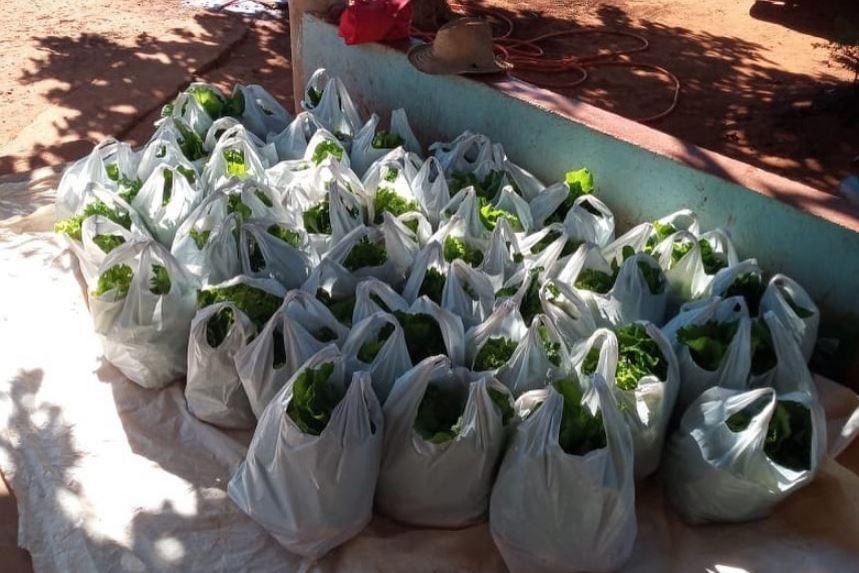 Kit's de verdura fornecidos pela prefeitura