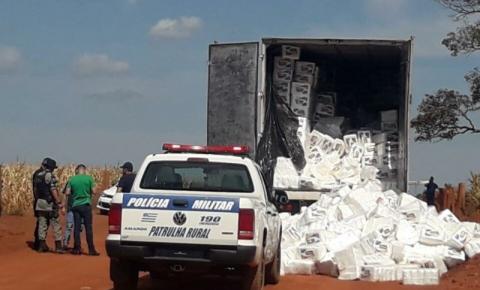 PM apreende 1,5 tonelada de maconha em Anápolis; suspeito foi morto