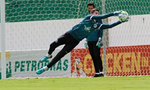 Tadeu exalta início sem sofrer gols na Série B e destaca Goiás mais vibrante com Pintado